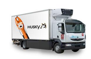 sav Husky